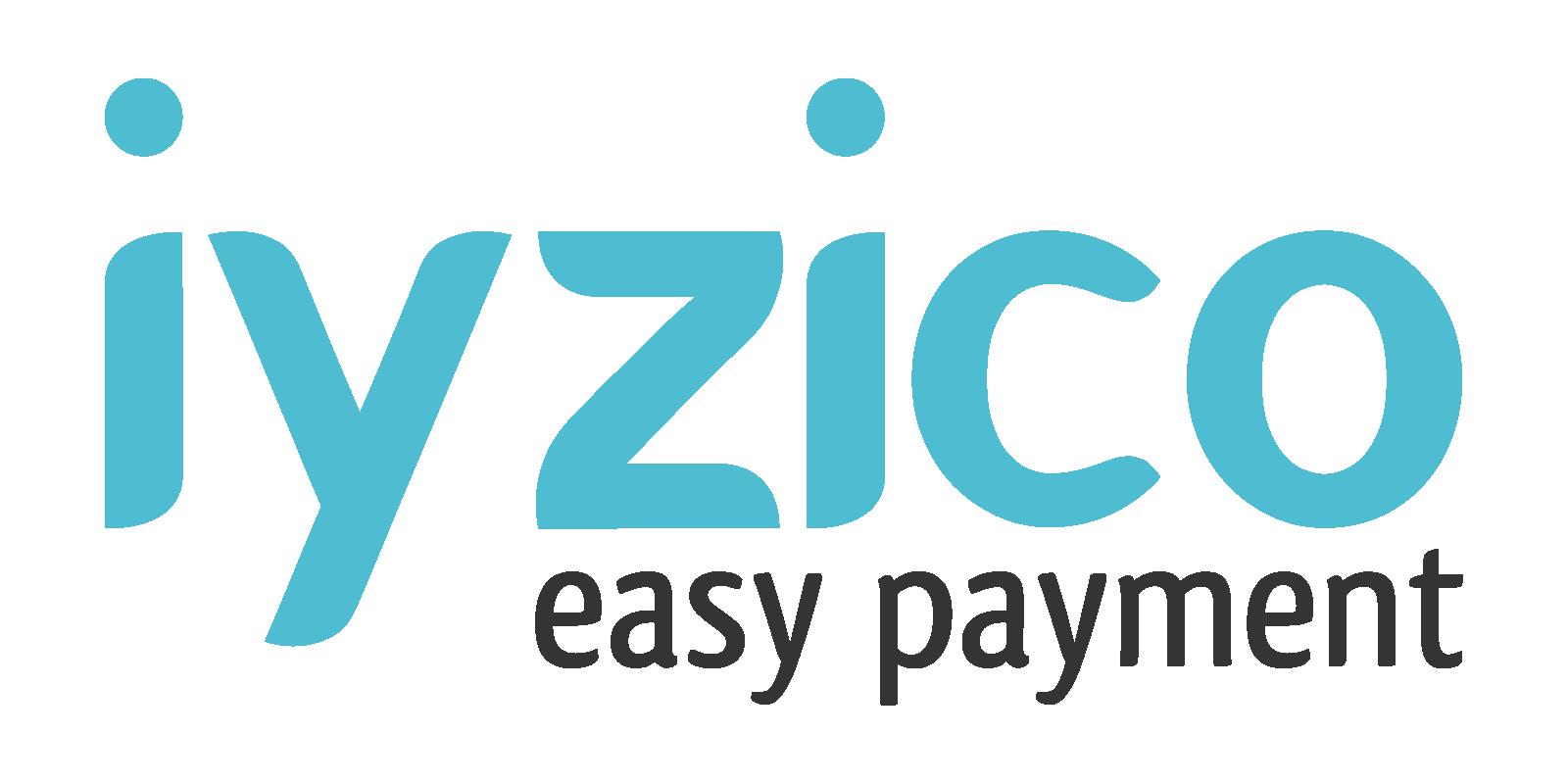 iyzico, Logo